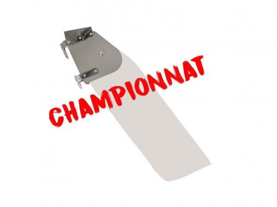 Full saffron championship